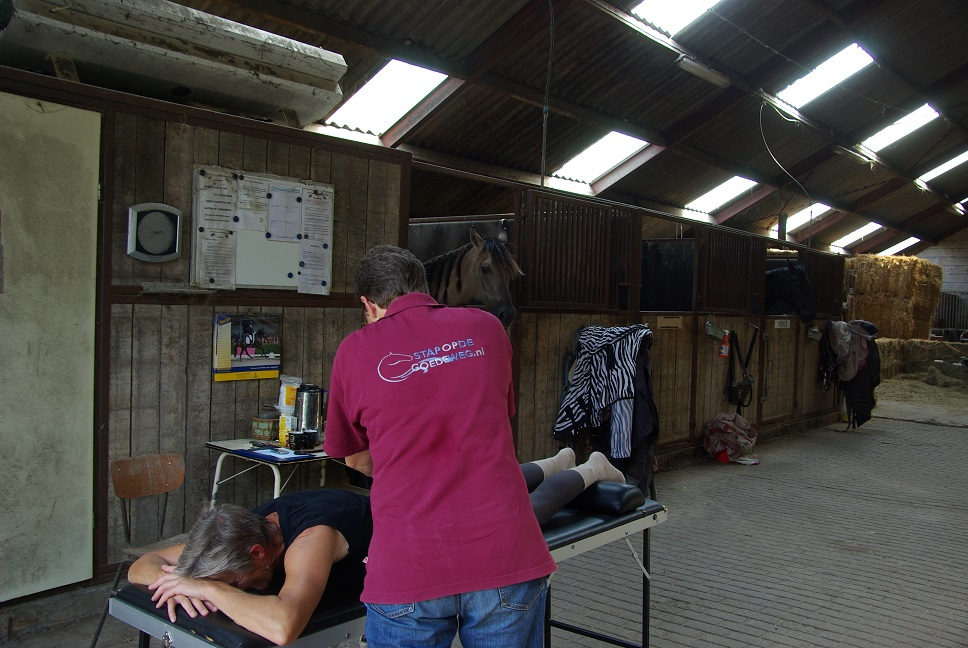 Augustus 2014 Ruiter én paard in optimale conditie